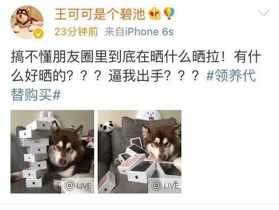 """中国知名富二代网红、""""国民老公""""王思聪先生,为其爱犬购买8台iPhone7,并用自己的6s.jpg"""