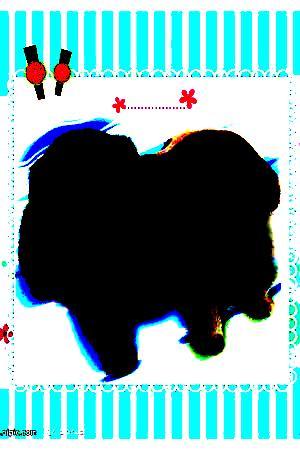 黑哥熊二图_对比度20倍.jpg