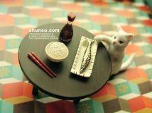 2012.8.6-音乐小铺第38期——小游玩